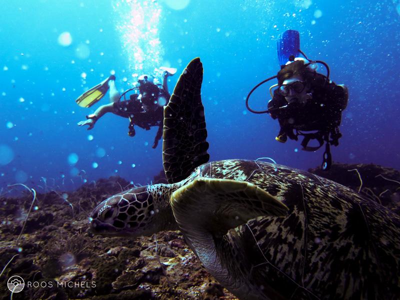 Learning to dive at Gili Trawangan