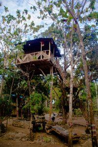 treehouse_nusa_penida