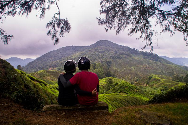 Malaysia's nature; Cameron Highlands