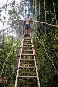 canopy_walkway_taman_negara