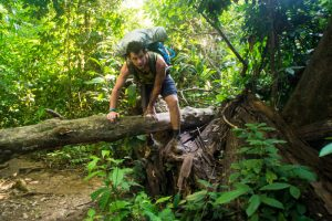 jungle_trekking_taman_negara