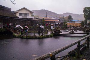 8 ponds at Fujikawaguchiko