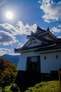 Japanese Alps One castle