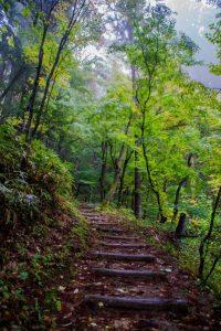 Japanese Alps takayama shiroyama park